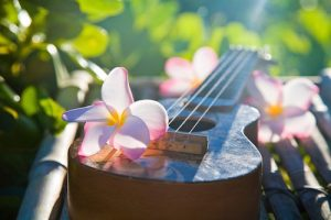 Plumeria lei over an ukulele, Hawaiian string instrument brought to Hawaii from Portugal in the 19th century